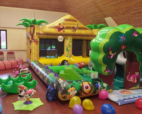 Jungle Playzone Package